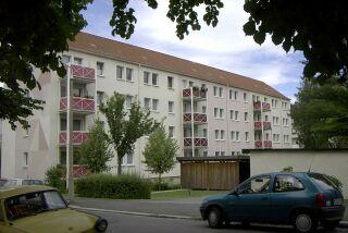 Hirschgr320
